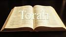 LoveIsrael.org - Torah