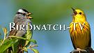 BIRDWATCH-TV