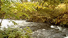 Norwegiem nature!!!:):)