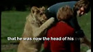 Christian The Lion - Heartwarming True Story