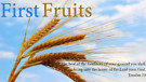 Biblical Prosperity (4) - The Principle of Firstfruits