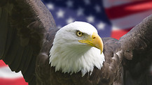 Is Liberty Threatened in America? Part 1