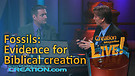 (3-02) Fossils: Evidence for Biblical creation (...