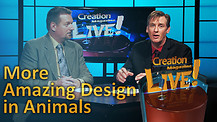 (5-22) More amazing design in animals