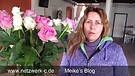 Vlog 28- Verwirrung und Zweifel in Glaubensfrage...