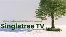 Singletree TV