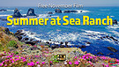 Free Full Length Preview of Summer at Sea Ranch