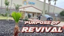 Purpose Of Revival