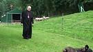 Persecutions - Bishop Jean Marie, snd speaks to ...