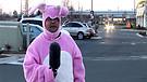 Bob the Bunny - Refuge Easter 2009 Teaser (HDV)