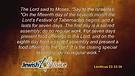 Celebrating Sukkot (Part 1) (September 28, 2015)
